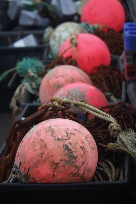 Crabbing paraphernalia 2