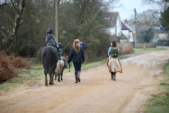 Walking with ponies