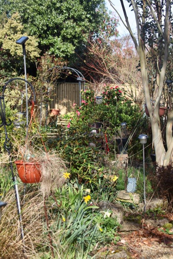 Garden view from Fiveways
