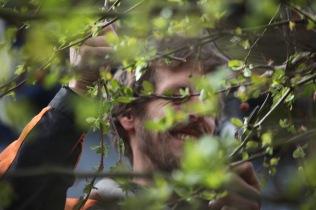 Aaron pruning crab apples 2