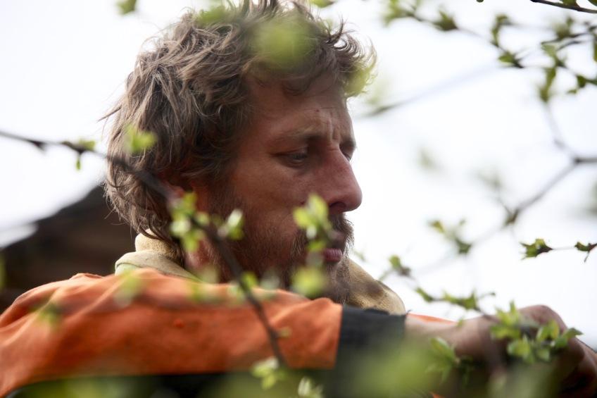Aaron pruning crab apples 4