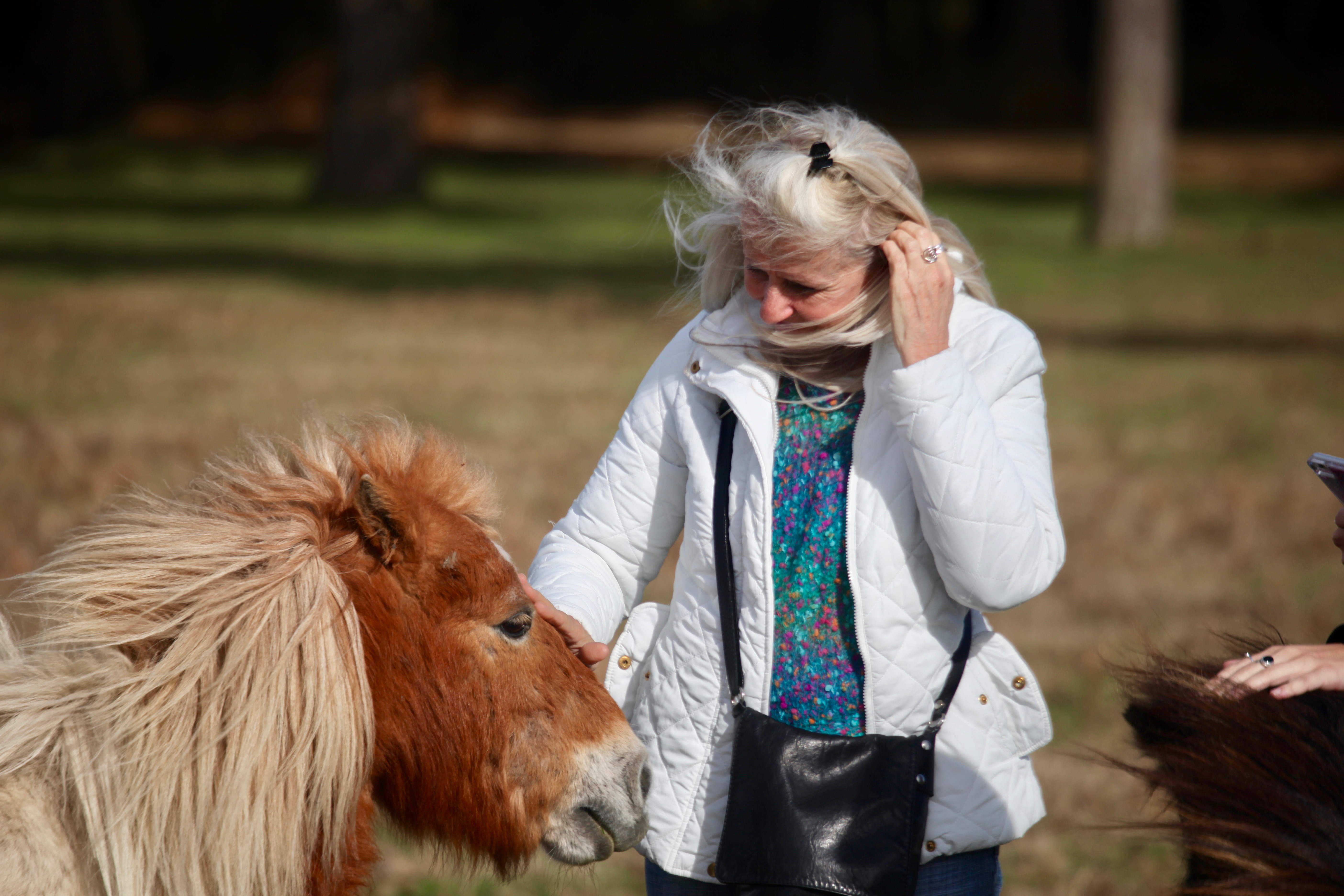 Women petting ponies