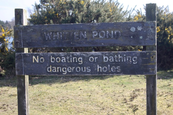 Whitten Pond sign