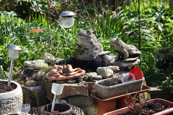 Frogs and Jattie's sculpture