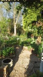Garden from Rose Garden through Heligan Path