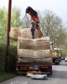 Thatching reeds unloading 3