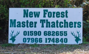 New Forest Master Thatchers