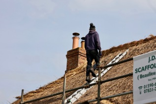 Thatching progress 3