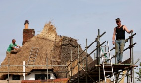 Thatching progress 10