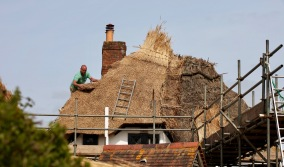 Thatching progress 11