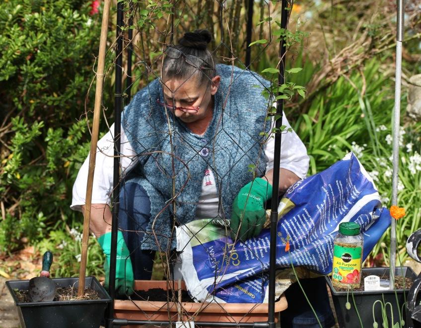 Jackie preparing sweet pea trough 3