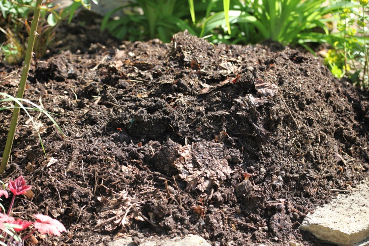 Compost on oval bed