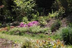 MacPenny's garden 7