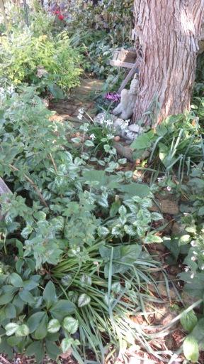 Head Gardener's Walk 1