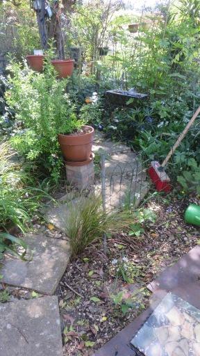 Head Gardener's Walk 3