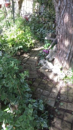 Head Gardener's Walk 4