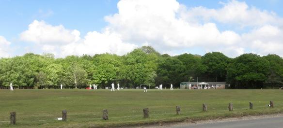 Cricket match 1