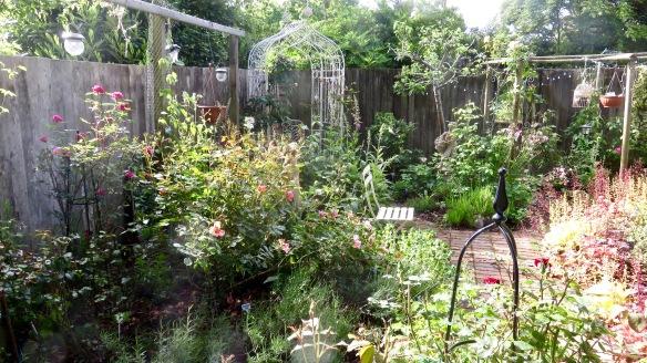 Rose Garden 5
