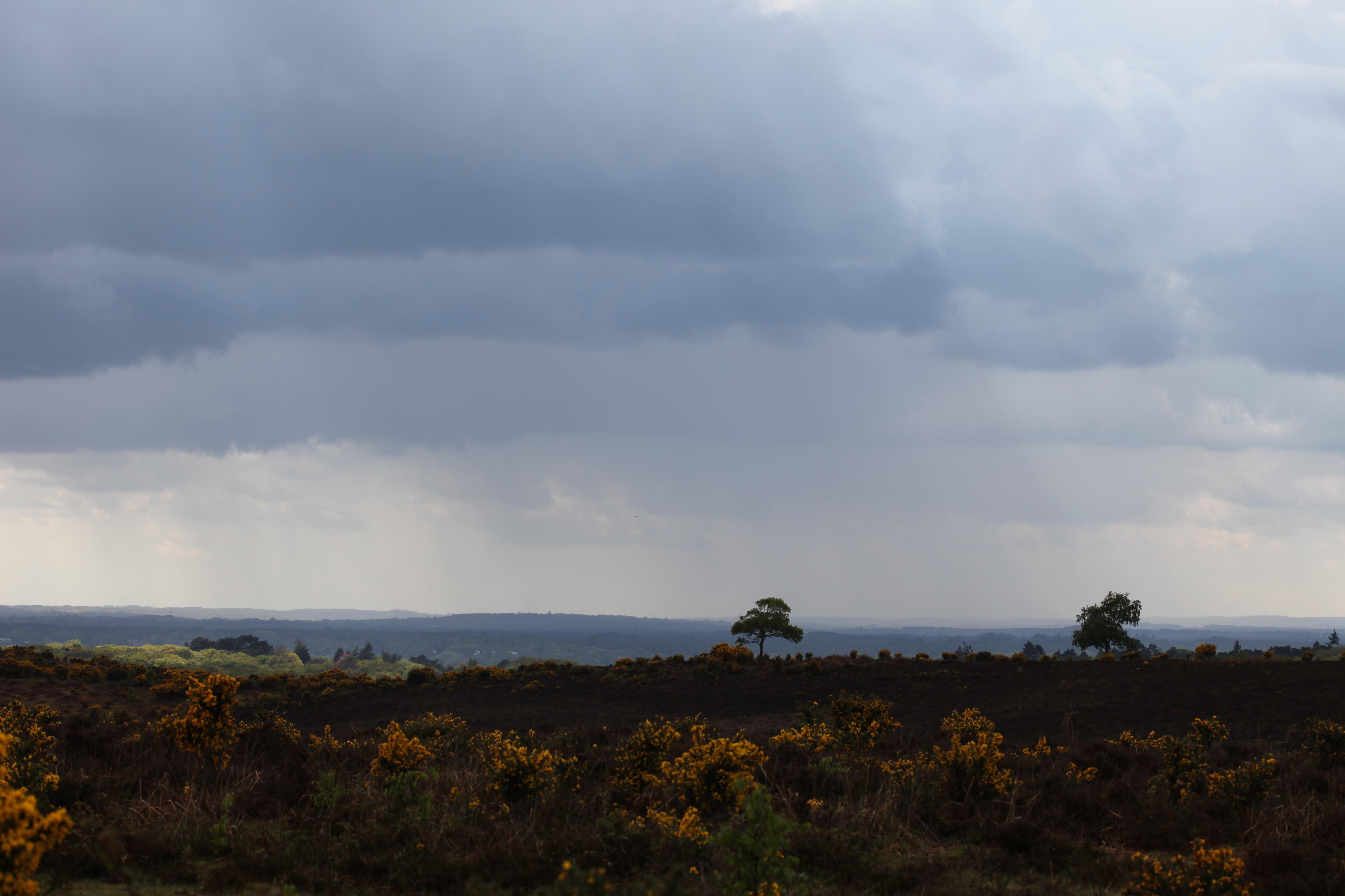 Rainclouds 1