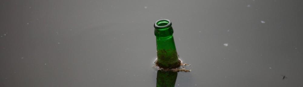 Bottle in lake 2