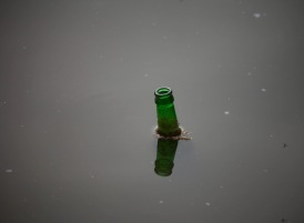Bottle in lake 2