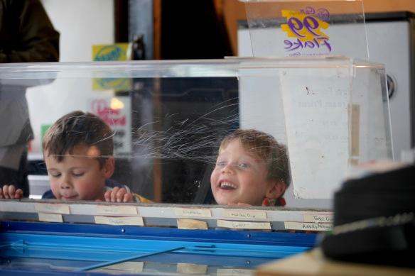 Boys choosing ice cream