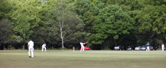 Cricket match 2