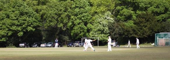 Cricket match 3