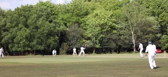 Cricket match 5