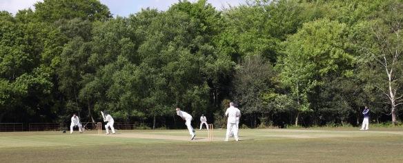 Cricket match 6