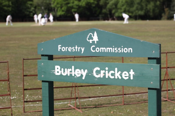 Cricket match 7
