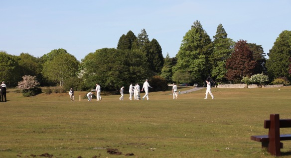 Cricket match 9
