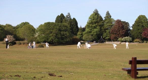 Cricket match 10