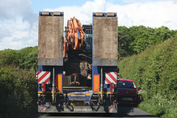 Crane transporter 3