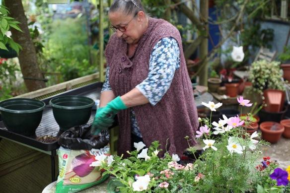 Jackie potting plants 1