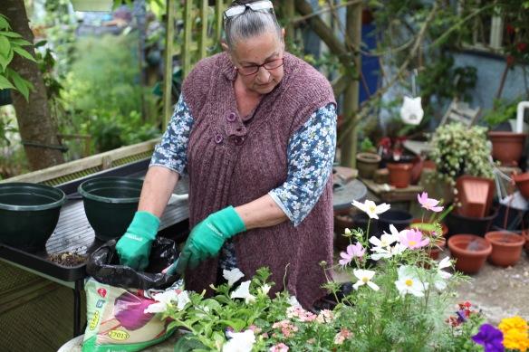 Jackie potting plants 2