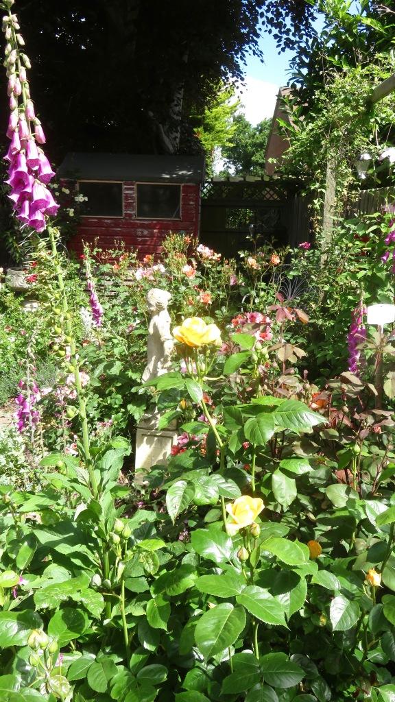 Rose Garden 2