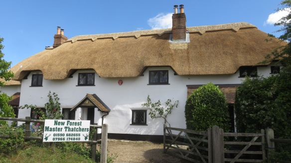 Thatched roof 1