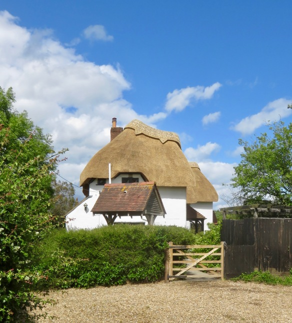 Thatched roof 3