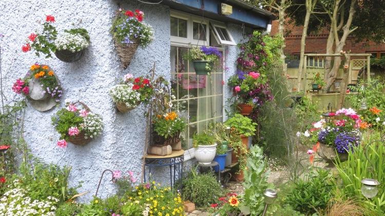 Kitchen wall planting 2