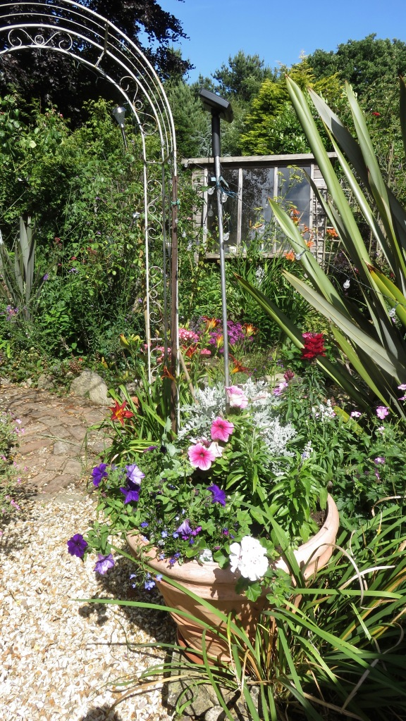 Garden view from concrete patio towards potting shed