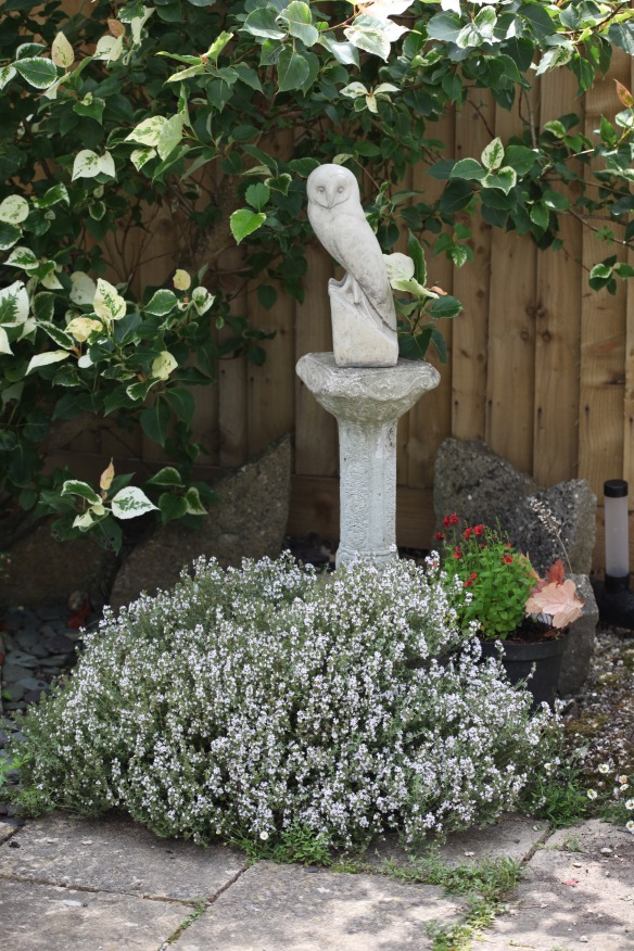 Barn Owl sculpture on plinth