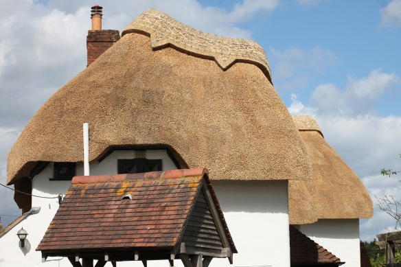 Thatched roof 2