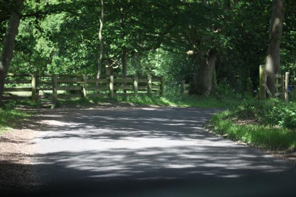 Braggers Lane