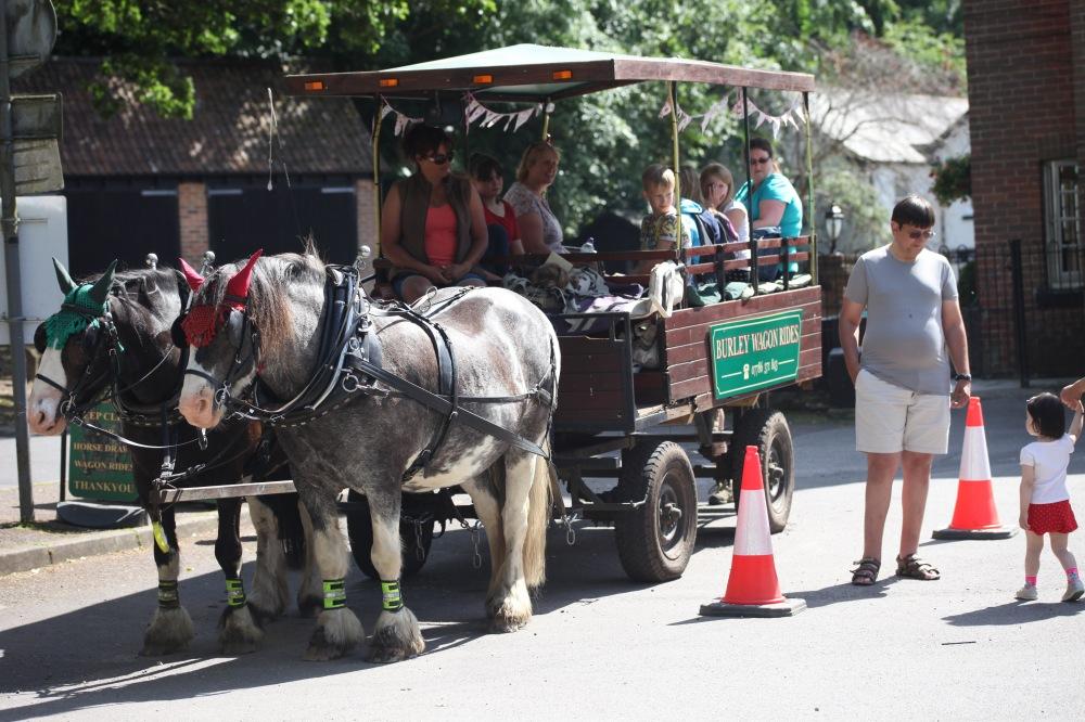 Burley Wagon Rides 1