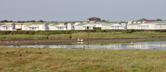 Birds on Sturt Pond and static caravans