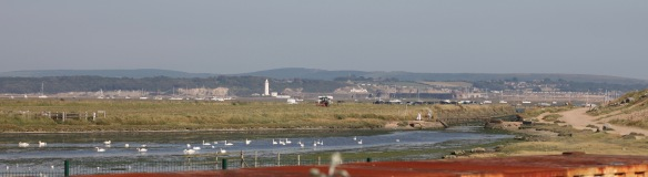 Sturt Pond and Hurst Castle