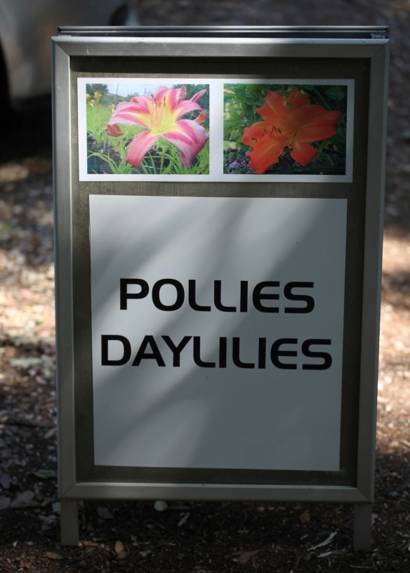 Pollies Daylilies sign