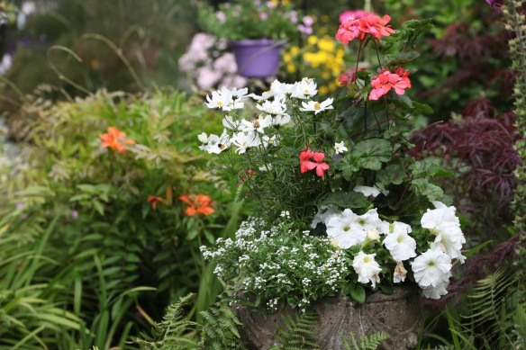Urn containing petunias, alyssum.geraniums, and cosmoses