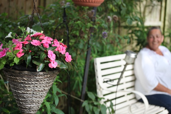 Petunias in hanging basket, Jackie's smile